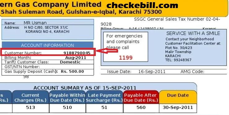 ssgc bill customer no